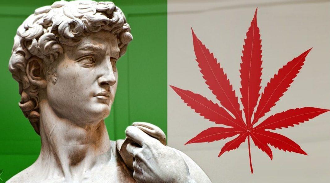 To pierwszy taki wyrok w historii. We Włoszech uniewinniono pacjenta, który uprawiał bez zezwolenia marihuanę do celów medycznych. Mieszkaniec Arezzo został najpierw oskarżony o handel ziołem, a następnie ułaskawiony przez sąd.